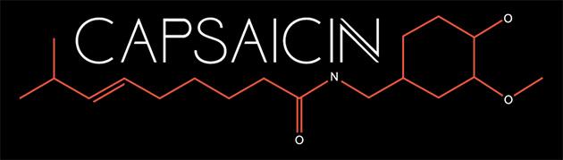 AMD Capsaicin