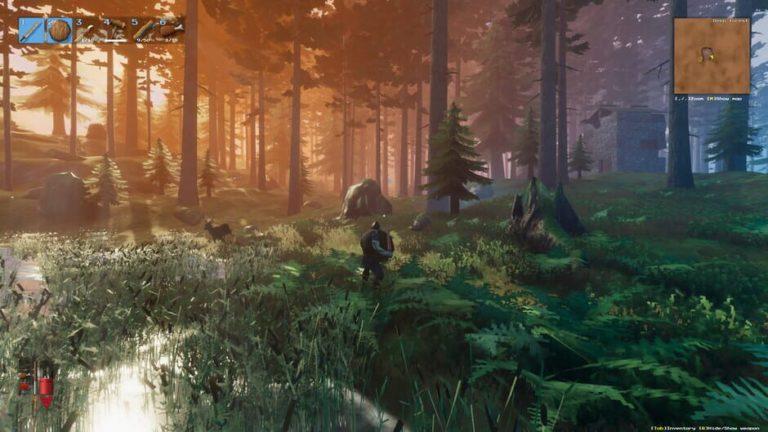 valheimin metsa